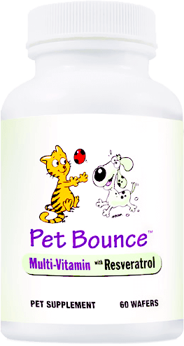 Pet Bounce Review & Results - Top-Rated Multivitamins for Pets