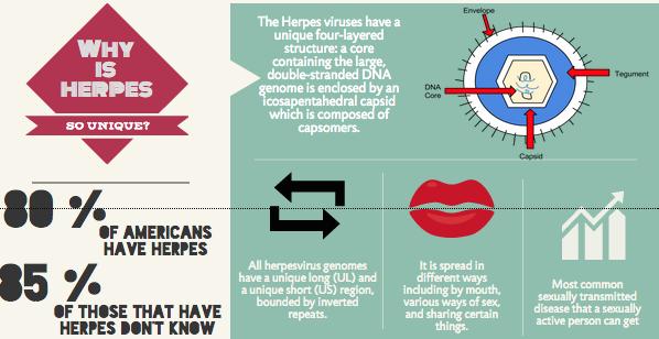 HSV Eraser Blueprint - Does it Really Work?