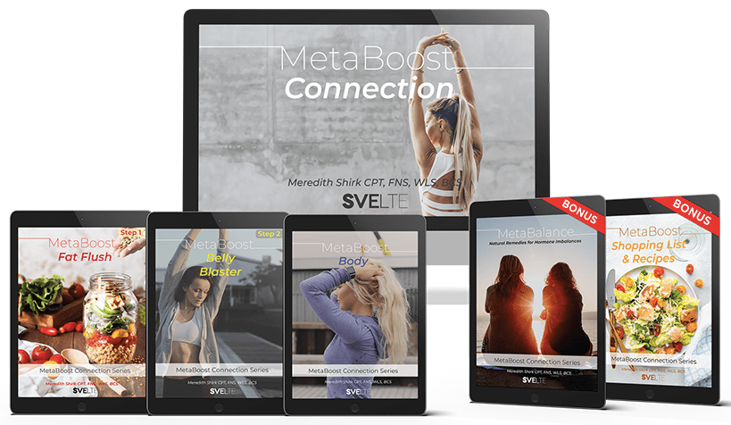MetaBoost Connection PDF Download