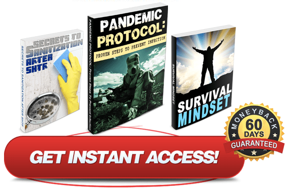 Pandemic Protocol Book Review