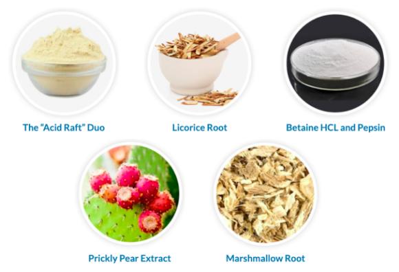 Peak Biome Acid Guard Ingredients