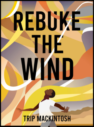 Rebuke the Wind Reviews