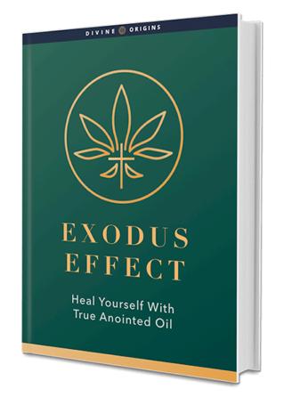 Exodus Effect Book Reviews