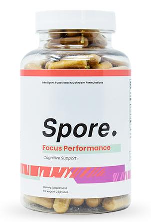 Spore Focus Performance Review